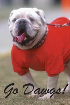 UGA? They need to call that poor pooch something else tho. Butch sounds cool. Or Killer. Or Chompy.