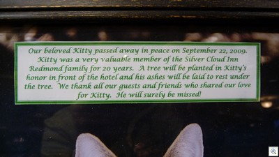 A sweet sweet message. If you never got to stay at SCR while Kitty was there, it's impossible for anyone to explain what he meant to the place.