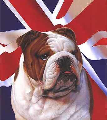 You made The British Bulldog cry!